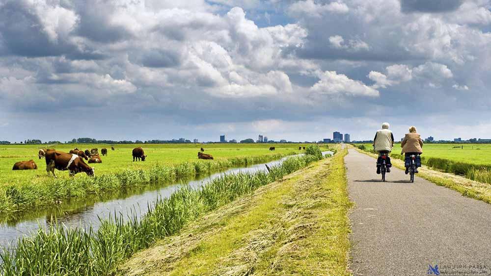 زمینه های سرمایه گذاری در هلند