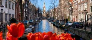 چرا مهاجرت به هلند