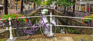 فرهنگ هلندی